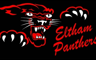 panther logo 400dp medium