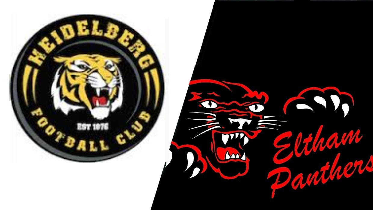 Round 8 – Panthers look to break drought against Tigers