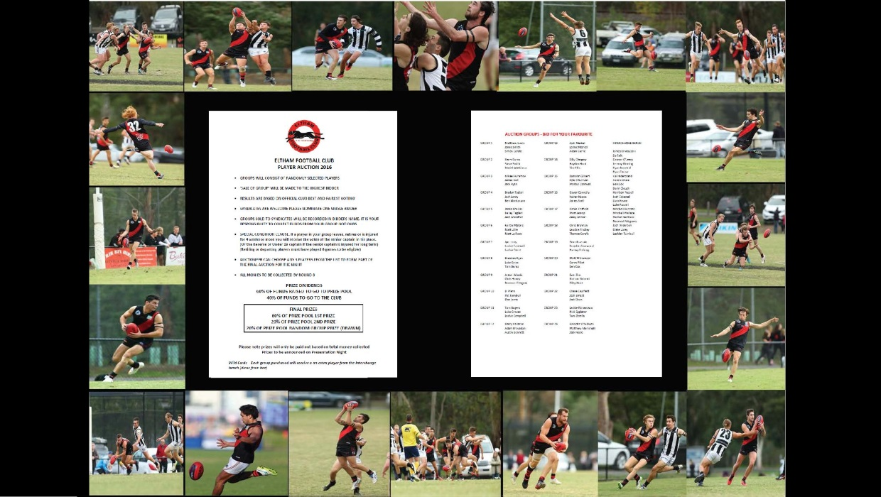 Eltham Panthers Player Calcutta Auction – THIS SATURDAY