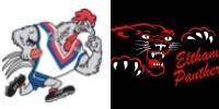 WP vs E